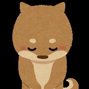chiju