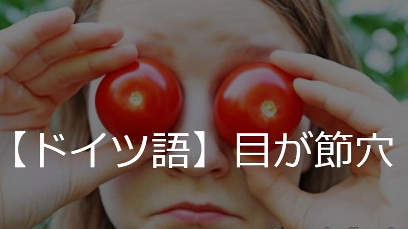 【ドイツ語イディオム講座】#5🍅🍅目の上のトマト❓【英語で理解】